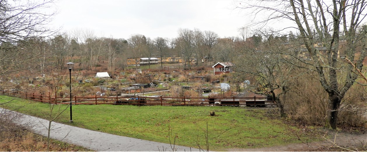 Panorama över koloniområdet i vårens tid